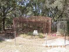 cages at BCR