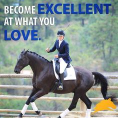 wow... just- wow! Look closely and notice what is missing on this dressage horse!