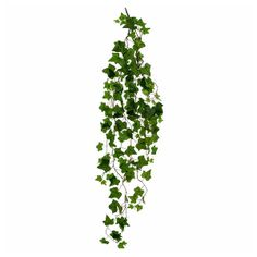 """Wyld Home Faux Trailing Ivy: Lovely, full trailing spray of green ivy.   We pride ourselves in featuring the most naturalistic faux flowers and botanicals - they're seasonal, high quality and beautifully realistic. We favour natural and organic over cultivated and perfect. """"Just gathered"""" rather than """"arranged"""". Please keep your faux flowers and botanicals out of direct sunlight as strong UV light may fade the natural dyes."""