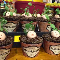 Mandragora cupcakes
