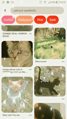 Real Horror, Cute Fonts, Cute Little Animals, Homescreen, Aesthetic Wallpapers, Modern Art, Projects To Try, Kawaii, Panda