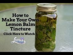 If you are studying herbal magic or any form of Witchcraft that involves herbs, let me introduce you to lemon balm! Here are details, how to grow it, its many medicinal, magical and folk uses! Herbal Tinctures, Herbal Extracts, Herbalism, Natural Medicine, Herbal Medicine, Herbal Remedies, Natural Remedies, Health Remedies, Nut Milk Bag