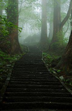 Misty path to shrines, Mount Haguro, Yamagata, Japan