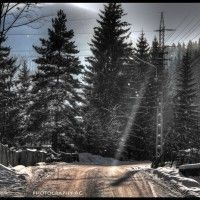 Winter in Bucovina