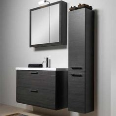 Modern black bathroom vanity and cabinets