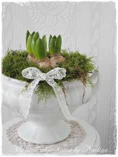 Easter - hyacinths in soup tourine with moss Hoppy Easter, Easter Gift, Easter Crafts, Oster Dekor, Little Gardens, Christmas Flowers, Spring Bulbs, Deco Floral, After Christmas