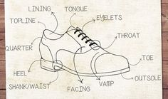 Oxford Shoes Anatomy
