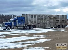 "~Bullboy~ Thanks and all credits to Trevor Nolan  ""Favel Transport heading to Quebec with a load of feeders"""