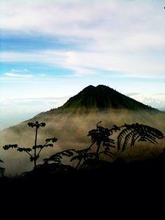 Indonesia Ijean