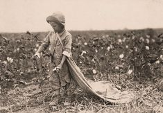 The History Place - Child Labor in America 1908-12: Lewis Hine Photos - Field and Farm Work