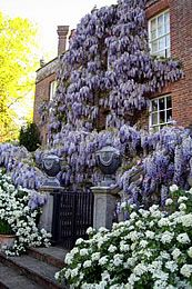 Pashley Manor Gardens On The Border Of East Sus And Kent England