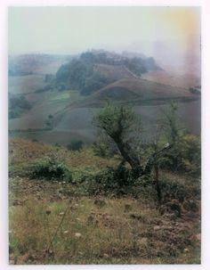 Polaroid by Andrei Tarkovsky Lot 4 - Polaroid 9