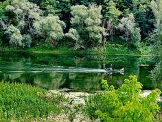 pokupsko - river of kupa