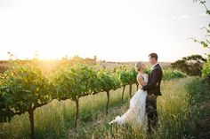 Angus and Lauren's wedding in McLaren Vale at Chapel Hill Wines, featuring some amazing Adelaide vendors. Photographed by Lucinda May Photography. Plan Your Wedding, Wedding Planning, Wedding Day, Bird In Hand Winery, Sunset Photos, Great Shots, Us Images, Marry Me, How To Take Photos