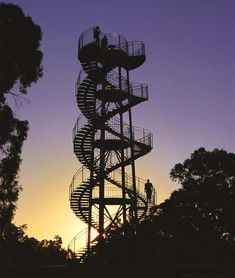 The DNA Tower at sunset, Kings Park and Botanic Garden. Photo: P Okely - Kings Park to do! Garden Pavillion, Kings Park, Slums, Walking In Nature, My Favorite Part, Water Garden, Western Australia, Virtual Tour, Water Features