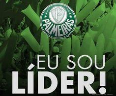 Líder Absoluto - Brasileirão 2016  # palmeiras Campeão