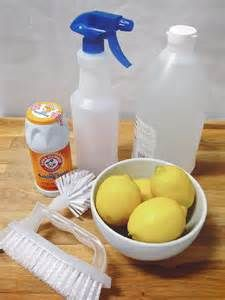 organic cleaning products all natural - Bing Images