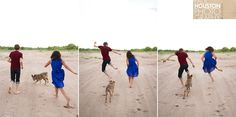engagement running with dog on beach