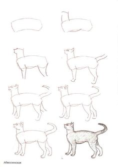 how to draw_aprenda a desenhar