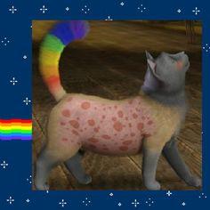 EEEEEE! Rainbow Cat  (Nyan Cat) in the Sims 3!!! Must do this!