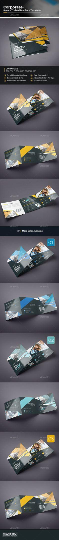 TriFold Brouchure  Tri Fold Ai Illustrator And Brochures
