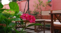 Flowery Inn Villa Alghero Surrounded by its garden, the Flowery Inn is located in a quiet corner of Alghero. It offers free Wi-Fi, free parking for motorbikes and air-conditioned apartments with LCD TV and fully fitted kitchenette.