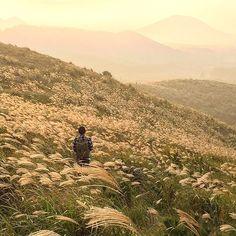 제주도 용눈이오름 Yongnuni oreum, Jeju island Photo by @eileen__wj  #jeju #jejuisland #jejudo #jeju_korea #korea #southkorea #landscape #view #제주 #제주도 #한국 #오름 #가을 #억새 #풍경 #제주여행
