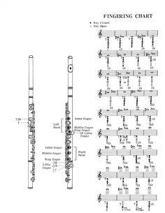 Diagramas y Cuadros de #digitación de #Trompeta