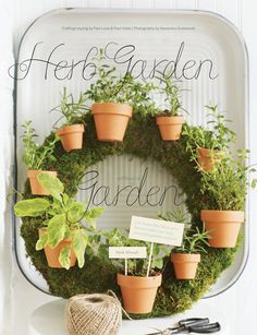 Herb Gardens without the Garden! Sweet Paul Summer 2012