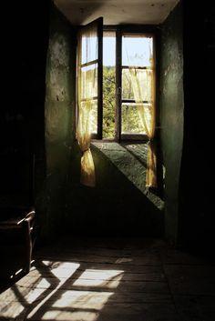 Chanson d'automne © Michel Giesi