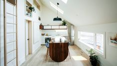 Dog nook and fireman's pole feature in laneway house by Studio North