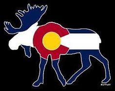 Vinyl Colorado Moose   eBay