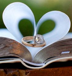 Wedding Ring Photo Idea ~ Book of Love... Wedding ideas for brides, grooms, parents & planners ... https://itunes.apple.com/us/app/the-gold-wedding-planner/id498112599?ls=1=8
