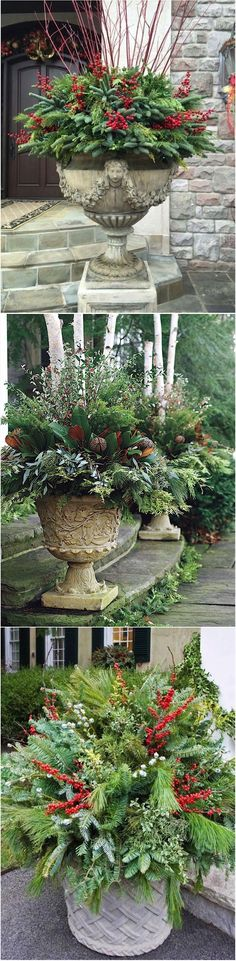 When you choose what brand of oceanic plants you wish to have, summon up that the plants should only cloak about half of the water Christmas Planters, Christmas Arrangements, Outdoor Christmas Decorations, Christmas Wreaths, Christmas Crafts, Holiday Decor, Christmas Urns, Christmas Ideas, Merry Christmas