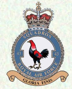Air Force Aircraft, Military Cap, Royal Air Force, Badges, Presents, Vehicles, Animals, Flags, Patches