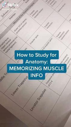 Nursing Student Tips, Nursing School Notes, Medical School, Life Hacks For School, School Study Tips, 1000 Lifehacks, Medicine Student, School Essentials, Study Skills