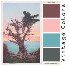 Vintage Color Palette - The Witch Tree - get hex color codes on the blog ponyboypress.com