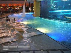 Indoor Swimming Pool Design Ideas For Your Home 14