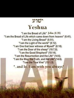 Yeshua ♥... aka, Jesus Christ, Son of Man, Lion of Judah, Lamb of God, Redeemer, Savior, Immanuel, Almighty, Word of God, Alpha, Omega, Shepherd, Counsellor, Deliverer, King of kings, Lord of lords, Light of the world, Messiah, Morning Star, Prince of Peace, Judge...and a great many more!