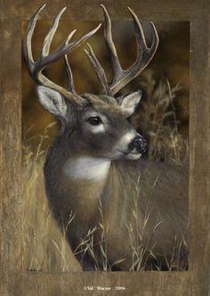 Whitetail deer buck painting by Val Warner