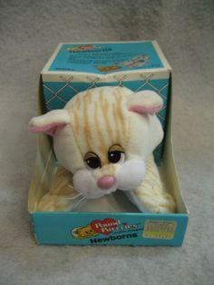 Vintage Tonka 1986 POUND PUPPIES Newborns 8 cream tabby cat plush MIB Purrries | eBay
