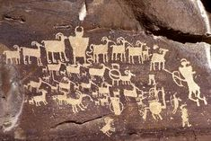 Fremont Area Rock Art, Nine Mile Canyon, by James Q. Jacobs. The Hunting Scene. The tall, rocky cliffs lining the canyon provide extensive game habitat. [This appears to be a pre-contact, pre-horse hunting story. JE]