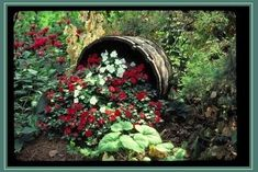 Do you have a whiskey barrel planter in your garden? Are these planters just common in the United States or are they all over the world? Whiskey Barrel Planter, Whiskey Barrels, Half Barrel Planter Ideas, Large Terracotta Pots, Barrel Flowers, Shade Garden, Flower Beds, Dream Garden, Lawn And Garden