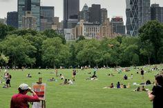 Central Park, un poumon vert au coeur de Manhattan #NY ©Salaün Holidays