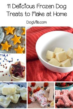 Looking for frozen dog treats recipes to cool your pooch on hot days? These ideas are so easy, you'll love making them as much as Fido loves eating them! Frozen Dog Treats, Diy Dog Treats, Homemade Dog Treats, Healthy Dog Treats, Doggie Treats, Dog Biscuit Recipes, Dog Treat Recipes, Dog Food Recipes, Hypoallergenic Dog Treats