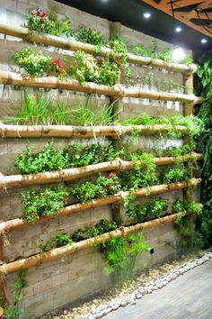 txt Fabulous DIY Vertical Garden Design Ideas Do you have a blank wall? do you want to decorate it? the best way to that is to create a vertical garden wall inside your home. A vertical garden wall, also called… Continue Reading → Diy Garden, Garden Projects, Garden Landscaping, Diy Projects, Bamboo Garden Ideas, Garden Trellis, Garden Edging, Garden Pond, Garden Pests