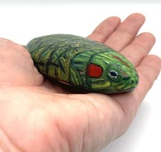 Excited to share the latest addition to my #etsy shop: Painted Turtle Pet Rock Paperweight #mothersday #giftanimallover #animaldecor #wildlifeart #paintedstone #turtle