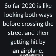 300 Funny Quotes Ideas Funny Quotes Funny Quotes