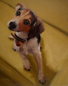 Buddy custom pet portrait fees and procedure, painting by artist Diane Hoeptner