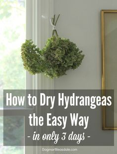 How to Dry Hydrangeas the Easy Way In Only 3 Days is part of Dried hydrangeas - I tried out how to dry hydrangeas the easy way, and they were dry after only three days! Boy, am I glad I added hydrangea bushes to our Blue Cottage Diy Hanging Shelves, Diy Wall Shelves, Floating Shelves Diy, Diy Home Decor Projects, Diy Projects To Try, Diy Garden, Garden Landscaping, Garden Ideas, Garden Paths